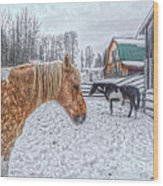 Big Horse  Little Horse Wood Print by Skye Ryan-Evans