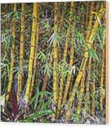 Big Island Bamboo Wood Print