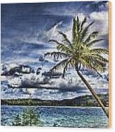 Big Island Beaches V2 Wood Print
