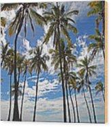 Big Island Hawaii Palm Stretch Wood Print
