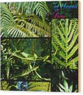 Big Island Of Hawaii Ferns 2 Wood Print by Colleen Cannon