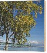 Big Mackinac Bridge 67 Wood Print