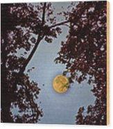 Big Old Autumn Moon Wood Print