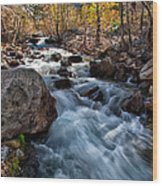 Big Pine Creek Wood Print by Cat Connor