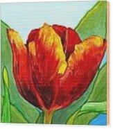 Big Red Tulip Wood Print