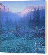 Bob Marshall Wilderness Wood Print
