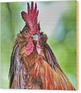 Big Rooster Wood Print