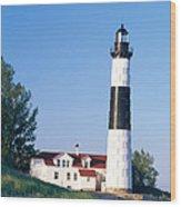Big Sable Lighthouse Wood Print