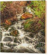 Big Spring In Sheep Creek Canyon Wood Print
