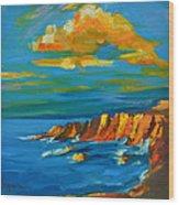 Big Sur At The West Coast Of California Wood Print by Patricia Awapara