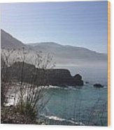 Big Sur Beach Wood Print
