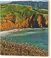 Big Sur California Coastline Wood Print