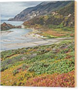 Big Sur California In Autumn Wood Print by Pierre Leclerc Photography