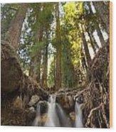 Big Sur Cascade  Wood Print