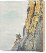 Big Sur Highway One Wood Print by Susan Lee Clark
