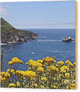 Big Sur Loves Yellow By Diana Sainz Wood Print