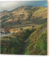 Big Sur Trail At Soberanes Point Wood Print