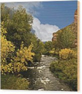 Big Thompson River 2 Wood Print