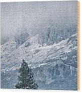 Big Tree At The Mountains Wood Print