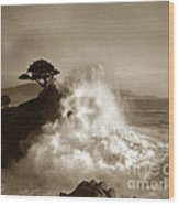 Big Wave Hitting The Lone Cypress Tree Pebble Beach California 1916 Wood Print