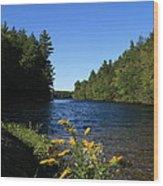 Bigelow Hollow  Wood Print