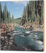 Trout Stream 002 Wood Print