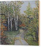 Bike Path Wood Print