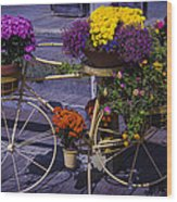 Bike Planter Wood Print
