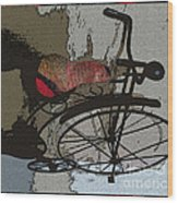 Bike Seat View Wood Print