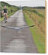 Biker And The Bird Wood Print