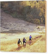 Bikers On Foresthill Divide Trail Wood Print