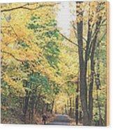 Biking In Bucks County Wood Print