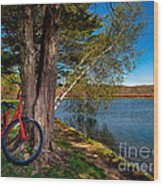 Biking To Horseshoe Lake Wood Print