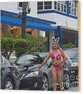 Bikini Bunny In Miami Wood Print