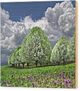 Billows Wood Print by Debra and Dave Vanderlaan
