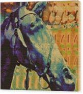 Billy Blue Wood Print