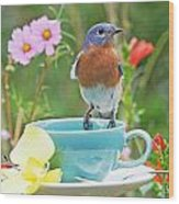 Billy Bluebird Having Tea Wood Print