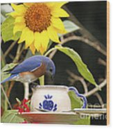 Bluebird And Tea Cup Wood Print