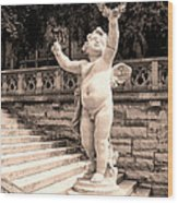 Biltmore Cherub Asheville Nc Wood Print by William Dey