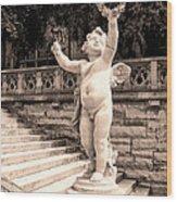 Biltmore Cherub Asheville Nc Wood Print