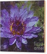 Biltmore Estate Water Lily Garden #2 Wood Print