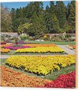 Biltmore Gardens  Wood Print