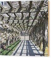 Biltmore House Gardens Wood Print