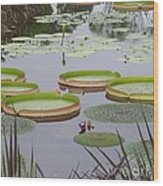 Biltmore House Water Garden Wood Print