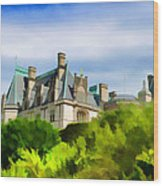 Biltmore In The Distance Wood Print
