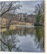 Biltmore Reflection Wood Print