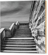 Biltmore Stairs Asheville Nc Wood Print