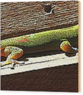 Binky The Gecko Wood Print by Colleen Cannon