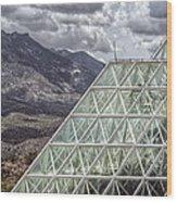Biosphere Wood Print