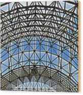 Biosphere2 - Arched Stucture Wood Print